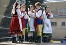 ZTL WŁODAWIACY na Dożynkach Powiatowych 2016 w Starym Brusie